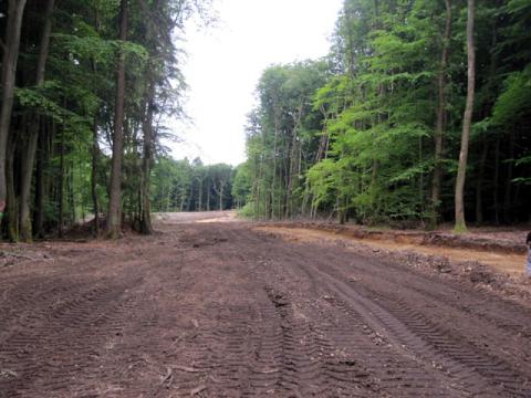 Naturzerstörung durch Zuwegebau für Windkraftanlagen im Wald