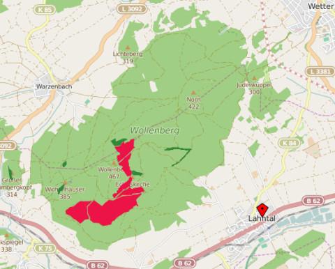 Künftige Naturzschutz-Kernflächen im Wollenberg [Update]